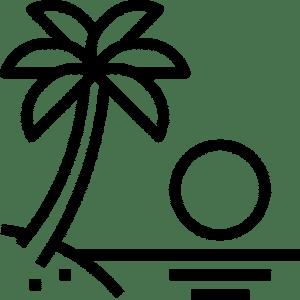 Palmier et soleil de Nice